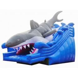 鲨鱼水滑梯